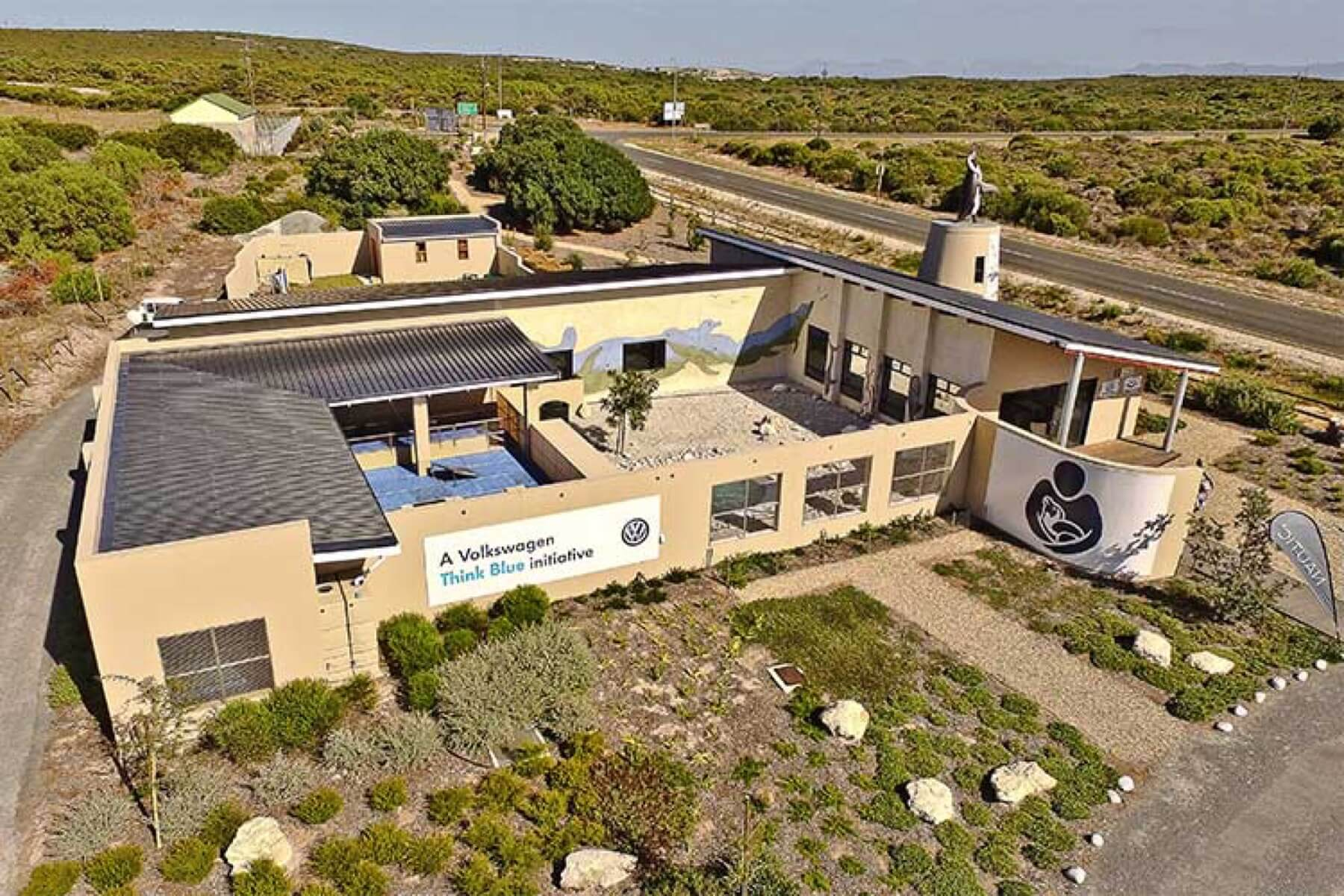 The African Penguin & Seabird Sanctuary, A Birds Eye View
