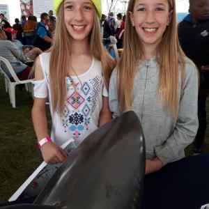 Hermanus Whale Festival 2019 - Shark smiles