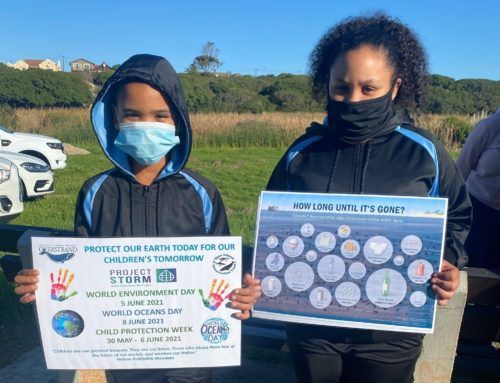 Storm Water Net And Stencils In Hawston On World Environmental Day 5 June2021
