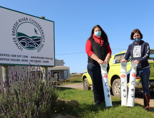 Road Trip with Plastics|SA in Preparation for International Coastal Cleanup Day